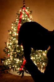 navidad-y-alcoholismo